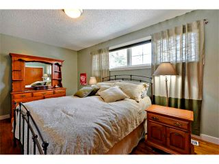 Photo 15: 2931 LATHOM Crescent SW in Calgary: Lakeview House for sale : MLS®# C4006222
