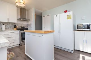Photo 12: 151 Obed Ave in : SW Gorge Half Duplex for sale (Saanich West)  : MLS®# 857575