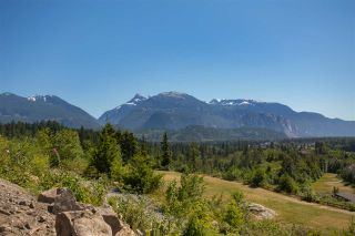 Photo 4: 2014 DOWAD Drive in Squamish: Tantalus Land for sale : MLS®# R2422415
