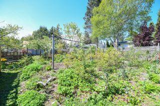 Photo 6: 2106 McKenzie Ave in : CV Comox (Town of) Full Duplex for sale (Comox Valley)  : MLS®# 874890