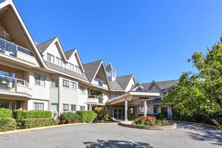 """Photo 1: 202 19241 FORD Road in Pitt Meadows: Central Meadows Condo for sale in """"VILLAGE GREEN"""" : MLS®# R2504429"""