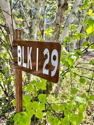 Photo 27: 29 Lot Block 1 Plan 9953 Road in Wallace Lake: R28 Residential for sale : MLS®# 202113671