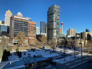 Photo 18: 514 339 13 Avenue SW in Calgary: Beltline Apartment for sale : MLS®# A1052942