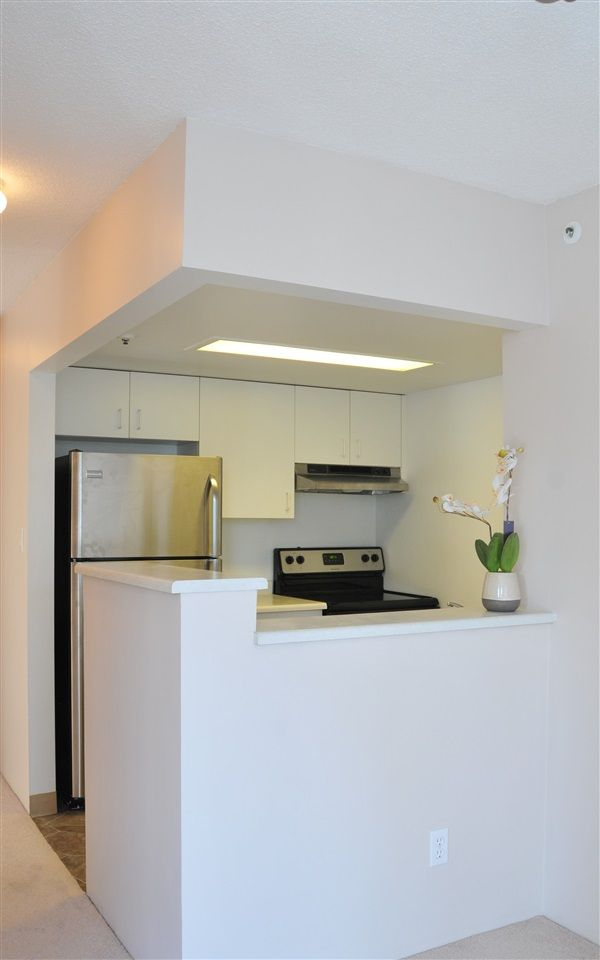 Photo 3: Photos: 203 838 AGNES STREET in New Westminster: Downtown NW Condo for sale : MLS®# R2113598