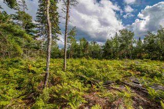 Photo 18: Lot Feltzen South Road in Feltzen: 405-Lunenburg County Vacant Land for sale (South Shore)  : MLS®# 202014608