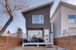 Photo 47: 2507 16A Street NW in Calgary: Capitol Hill Detached for sale : MLS®# A1082753