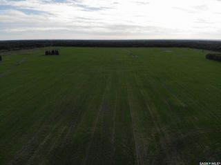 Photo 9: Melnychuk Land in Hudson Bay: Farm for sale (Hudson Bay Rm No. 394)  : MLS®# SK834016