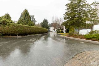Photo 19: 248 13604 67 AVENUE in Surrey: East Newton Townhouse for sale : MLS®# R2567584