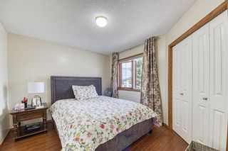 Photo 28: 23 Citadel Meadow Grove NW in Calgary: Citadel Detached for sale : MLS®# A1149022