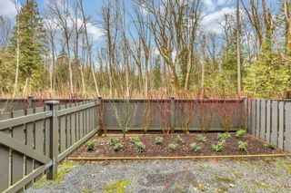 """Photo 28: 29 9718 161A Street in Surrey: Fleetwood Tynehead Townhouse for sale in """"Canopy AT TYNEHEAD"""" : MLS®# R2538702"""