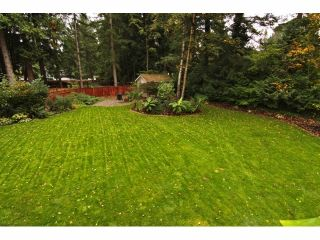 """Photo 19: 4530 197A ST in Langley: Langley City House for sale in """"Hunter Park"""" : MLS®# F1323380"""