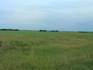 Photo 4: : Rural Beaver County Rural Land/Vacant Lot for sale : MLS®# E4239437