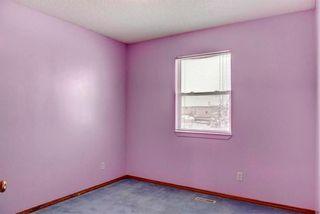 Photo 21: 254 SARATOGA Close NE in Calgary: Monterey Park House for sale : MLS®# C4165371