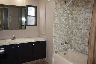 Photo 12: 365 Big Springs Drive SE: Airdrie Detached for sale : MLS®# A1137758