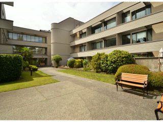 "Photo 16: 213 15275 19 Avenue in Surrey: King George Corridor Condo for sale in ""Village Terrace"" (South Surrey White Rock)  : MLS®# F1425373"