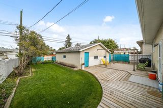 Photo 25: 3320 Dover Ridge Drive SE in Calgary: Dover Detached for sale : MLS®# A1141061