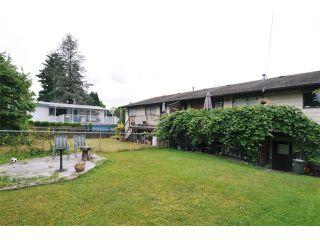 Photo 9: 617 LEA Avenue in Coquitlam: Coquitlam West Duplex for sale : MLS®# V968344