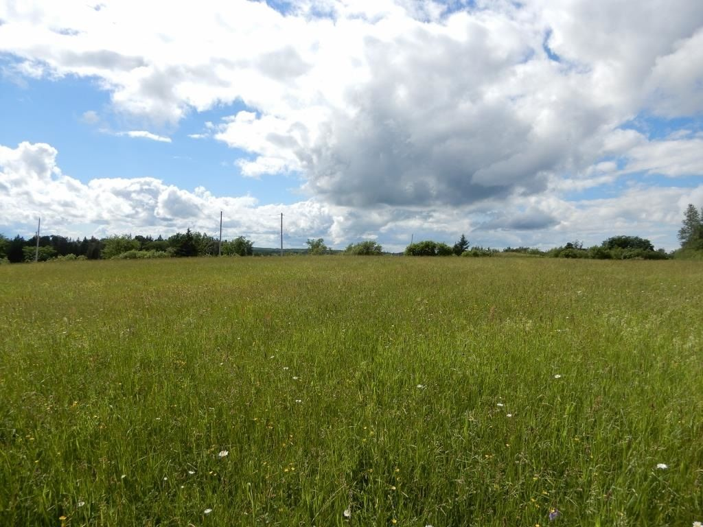 Main Photo: Lot 17 Second Division Road in Heathbell: 108-Rural Pictou County Vacant Land for sale (Northern Region)  : MLS®# 202116209