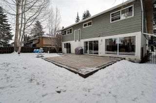 Photo 49: 192 QUESNELL Crescent in Edmonton: Zone 22 House for sale : MLS®# E4230395