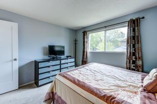 Photo 21: 3613 44 Avenue in Edmonton: Zone 29 House for sale : MLS®# E4246393