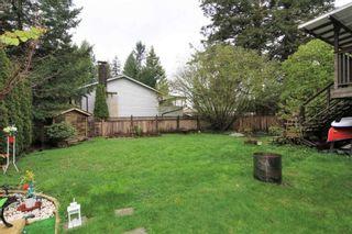 Photo 19: 11733 GRAVES STREET in Maple Ridge: Southwest Maple Ridge House for sale : MLS®# R2360689