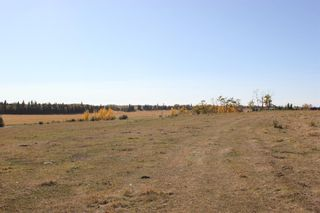 Photo 12: ON Township Road 355A: Rural Red Deer County Land for sale : MLS®# A1039276