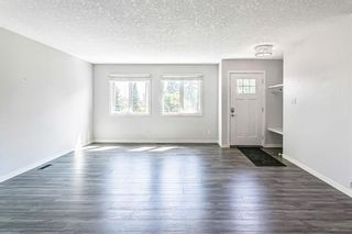 Photo 19: 7203 Fleetwood Drive SE in Calgary: Fairview Detached for sale : MLS®# A1129762