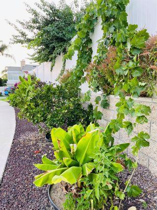 Photo 3: 7778 Morningside Lane in Highland: Residential for sale (276 - Highland)  : MLS®# EV21160432