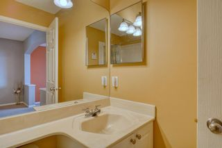 Photo 30: 262 Panamount Close NW in Calgary: Panorama Hills Detached for sale : MLS®# A1050562