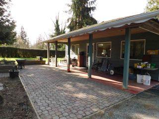 Photo 23: 9258 172 Street in Surrey: Fleetwood Tynehead House for sale : MLS®# R2539746