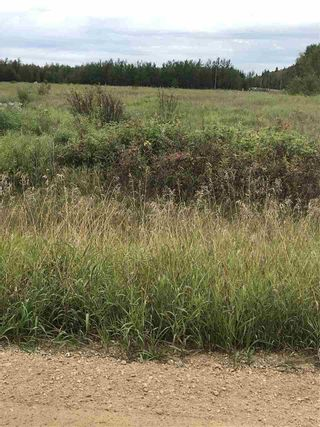 Photo 2: 234 TWP RD 602: Rural Westlock County Rural Land/Vacant Lot for sale : MLS®# E4231847
