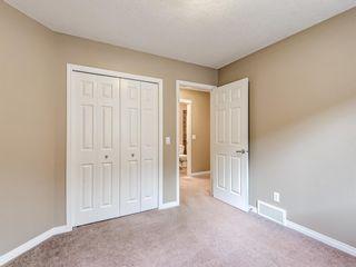 Photo 35: 29 SILVERADO SADDLE Heights SW in Calgary: Silverado Detached for sale : MLS®# A1009131