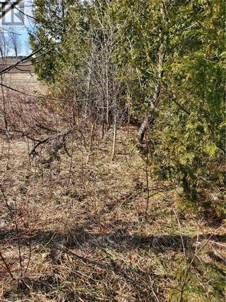 Photo 8: PT LT 21-22 GREY ROAD 14 in Grey Highlands: Vacant Land for sale : MLS®# 40088643