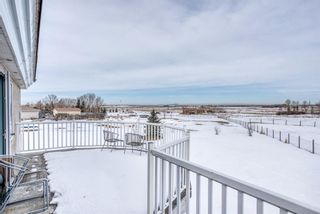 Photo 39: 55 Marquis Meadows Place SE: Calgary Detached for sale : MLS®# A1080636