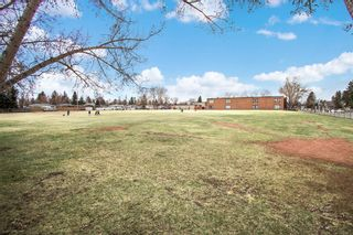 Photo 18: 7103 5 Street SW in Calgary: Kingsland Detached for sale : MLS®# A1093853