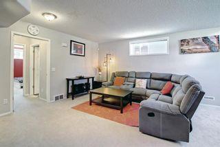 Photo 28: 67 Tarington Place NE in Calgary: Taradale Detached for sale : MLS®# A1146117