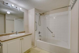 Photo 20: 3117 6818 Pinecliff Grove NE in Calgary: Pineridge Apartment for sale : MLS®# A1069420