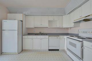 Photo 10: 55 9704 165 Street in Edmonton: Zone 22 House Half Duplex for sale : MLS®# E4260342