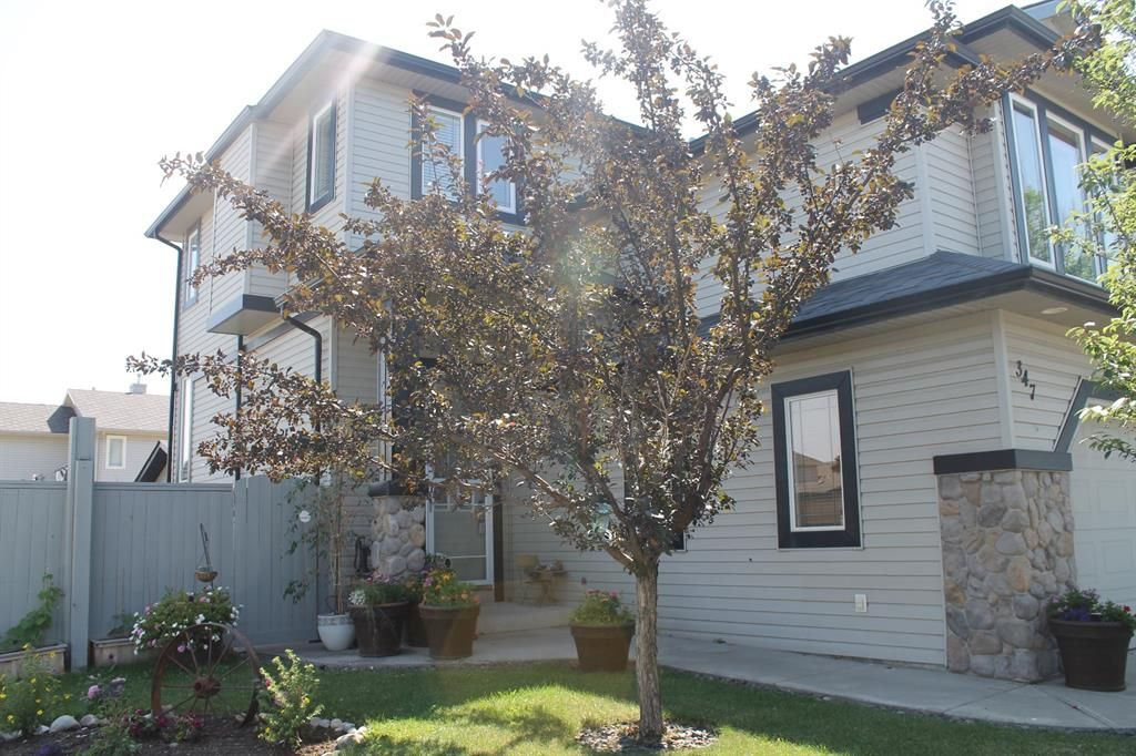 Main Photo: 347 EVANSTON View NW in Calgary: Evanston Detached for sale : MLS®# A1023112