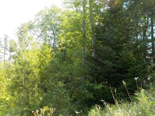 Photo 5: Lot M-1 127 Charleswood Drive in Windsor Junction: 30-Waverley, Fall River, Oakfield Vacant Land for sale (Halifax-Dartmouth)  : MLS®# 202121061