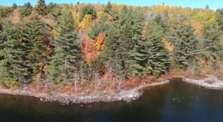 Photo 5: Lot 13 & 14 Cornwall Road in Upper Cornwall: 405-Lunenburg County Vacant Land for sale (South Shore)  : MLS®# 202109043