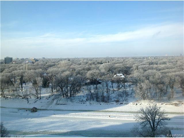 Photo 12: Photos: 246 Roslyn Road in Winnipeg: Osborne Village Condominium for sale (1B)  : MLS®# 1619975