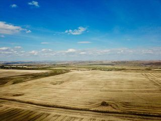 Photo 9: 1/2 Mile N of 434 Ave on 32 ST W: Rural Foothills County Land for sale : MLS®# C4243509