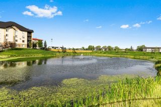 Photo 4: 8403 304 Mackenzie Way: Airdrie Apartment for sale : MLS®# A1146361