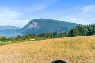 Photo 42: 6611 Northeast 70 Avenue in Salmon Arm: Lyman Hill House for sale : MLS®# 10235666
