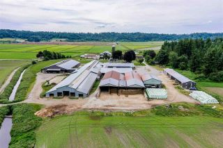 Photo 13: 27625 GRAY Avenue: Agri-Business for sale in Abbotsford: MLS®# C8038691
