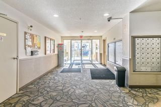 Photo 15: 8309 304 Mackenzie Way SW: Airdrie Apartment for sale : MLS®# A1153987