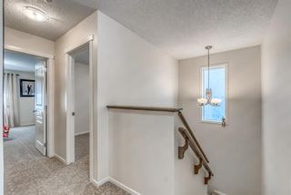Photo 24: 262 Copperstone Circle SE in Calgary: Copperfield Detached for sale : MLS®# A1136994