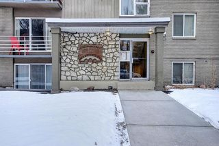 Photo 3: 303 215 25 Avenue SW in Calgary: Mission Apartment for sale : MLS®# A1063932