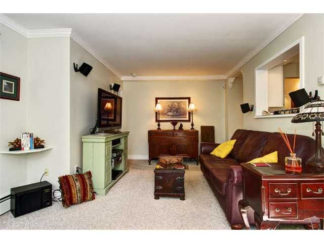 Photo 3: Photos: # 103 3020 QUEBEC ST in Vancouver: Mount Pleasant VE Condo for sale (Vancouver East)  : MLS®# V971233